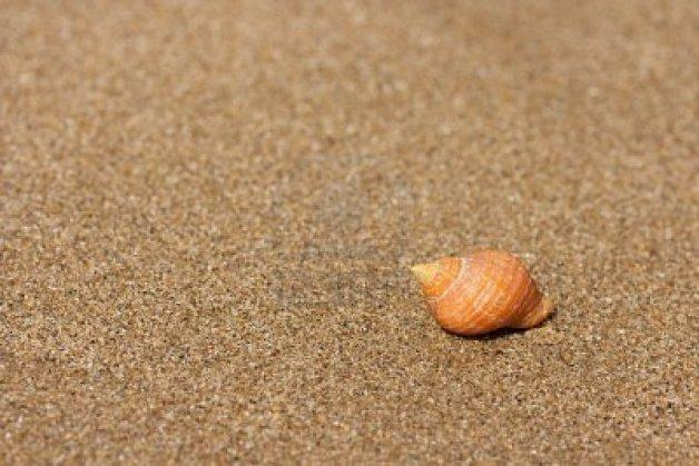 offerte-settembre-spiaggia-rimini
