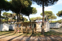 cottage-pineta